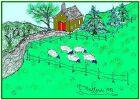 Sheep100.jpg